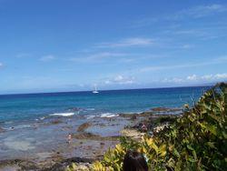 Hawaii 205