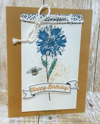 Touches of Texture Happy Birthday www.stampcrazywithalison.ca