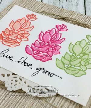 Live love grow stamp set just in case 5 www.stampcrazywithalison.ca