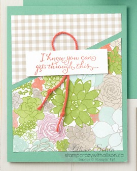 Just a CASE - Suite Sentiments 6 www.stampcrazywithalison.ca