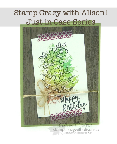 Just in Case Southern Serenade Stamp Set 2 www.stampcrazywithalison.ca-2