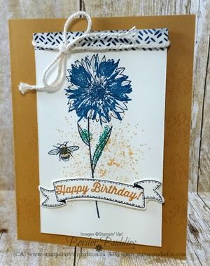 Touches of Texture Happy Birthday 2 www.stampcrazywithalison.ca