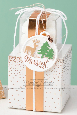 Merriest wishes stamp set & merry tags framelits www.stampcrazywithalison.ca