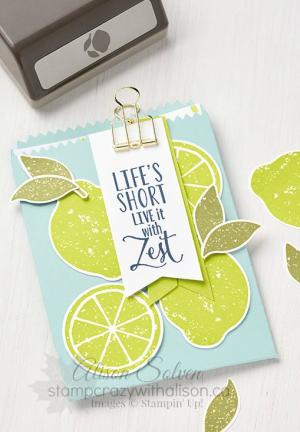 Just in Case Lemon Twist Stamp Set 4 www.stampcrazywithalison.ca