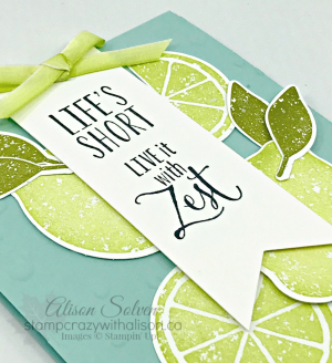Just in Case Lemon Twist Stamp Set 2 www.stampcrazywithalison.ca