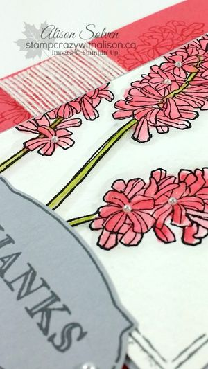 Helping Me Grow Stamp Set Watercolor Wonder closeup www.stampcrazywithalison.ca