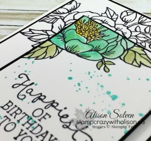 Birthday blooms spotlight 4 #stampinup www.stampcrazywithalison.ca