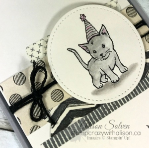 Colour Your World Blog Hop Little Cuties 3 www.stampcrazywithalison.ca