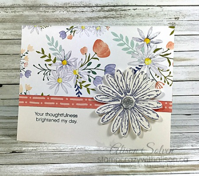 Just In Case Daisies www.stampcrazywithalison.ca