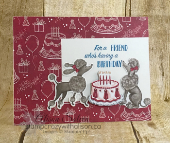 Just in Case Birthday Memories 2 www.stampcrazywithalison.ca
