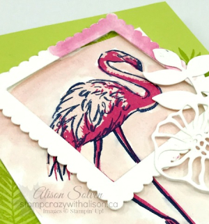 Just in Case Fabulous Flamingo 3 www.stampcrazywithalison.ca