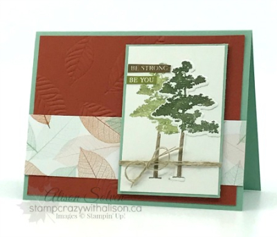 One Sheet Wonder Rooted in Nature 2 www.stampcrazywithalison.ca