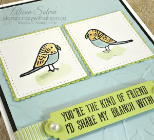 Bird Banter Stamp Set 3 www.stampcrazywithalison.ca