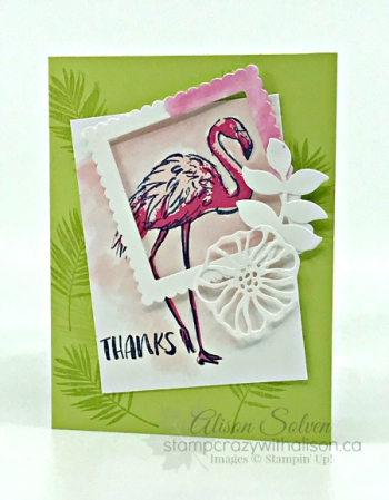 Just in Case Fabulous Flamingo 1 www.stampcrazywithalison.ca