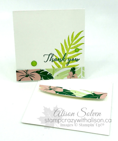 OSW Tropical Escape www.stampcrazywithalison.ca