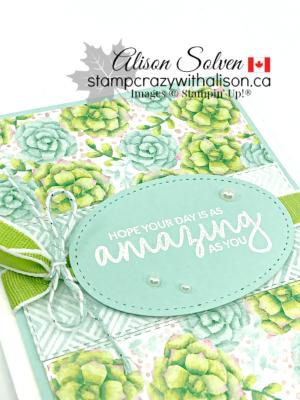 Painted seasons bundle www.stampcrazywithalison.ca-11