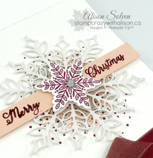 Color Without Borders Snowflake Showcase Promotion www.stampcrazywithalison.ca-3