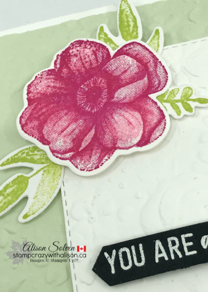 Country Floral Dynamic Textured Impressions Embossing Folder www.stampcrazywithalison.ca-2