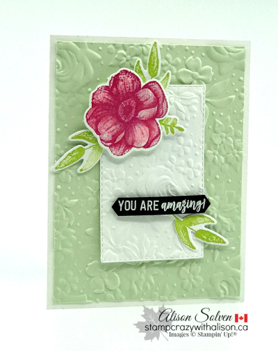 Country Floral Dynamic Textured Impressions Embossing Folder www.stampcrazywithalison.ca-3