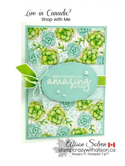 Painted seasons bundle www.stampcrazywithalison.ca-10