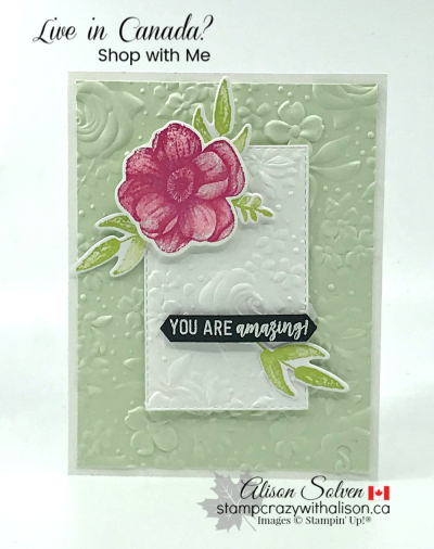 Country Floral Dynamic Textured Impressions Embossing Folder www.stampcrazywithalison.ca