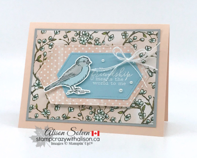 Just in Case Free as a Bird Bundle www.stampcrazywithalison.ca