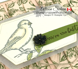 Just in Case Free as a Bird www.stampcrazywithalison.ca-3