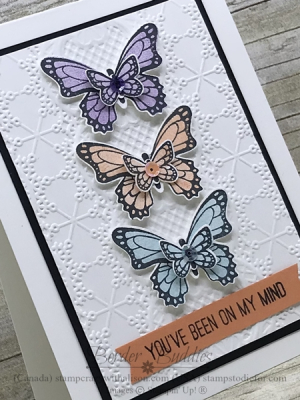 Card from Border Buddy PDF Tutorial you can earn FREE with an order at my online store  #butterflygala  bb