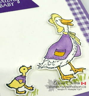 Fable Friends Baby Card www.stampcrazywithalison.ca-3