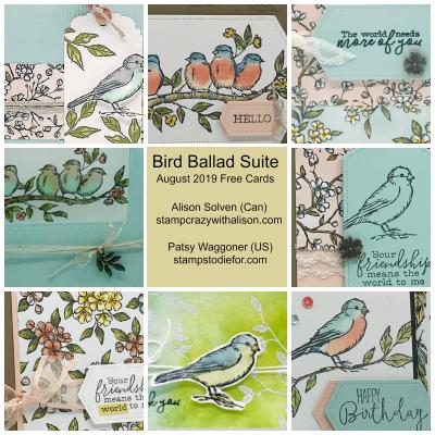 Bird Ballad Suite Collage