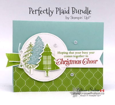 Just in Case Perfectly Plaid Cling Stamp Set www.stampcrazywithalison.com-4