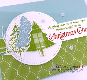 Just in Case Perfectly Plaid Cling Stamp Set www.stampcrazywithalison.com
