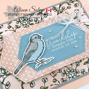 Just in Case Free as a Bird Bundle www.stampcrazywithalison.ca-4