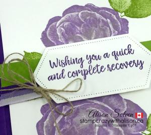 Just in Case Healing Hugs www.stampcrazywithalison.com-6