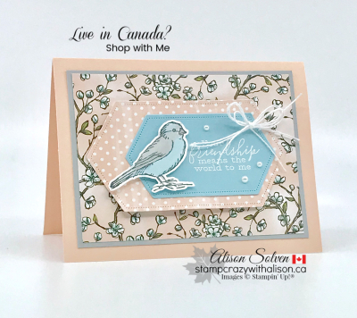 Just in Case Free as a Bird Bundle www.stampcrazywithalison.ca-3