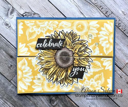 Celebrate Sunflowers Bundle www.stampcrazywithalison.com-6