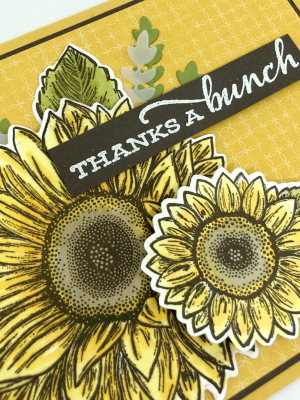 Just in Case Celebrate Sunflowers Stamp Set www.stampcrazywithalison.com-5