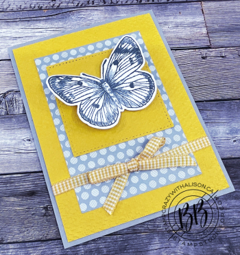 Batch1_Sunday Sketches Butterfly Brilliance stampcrazywithalison.com